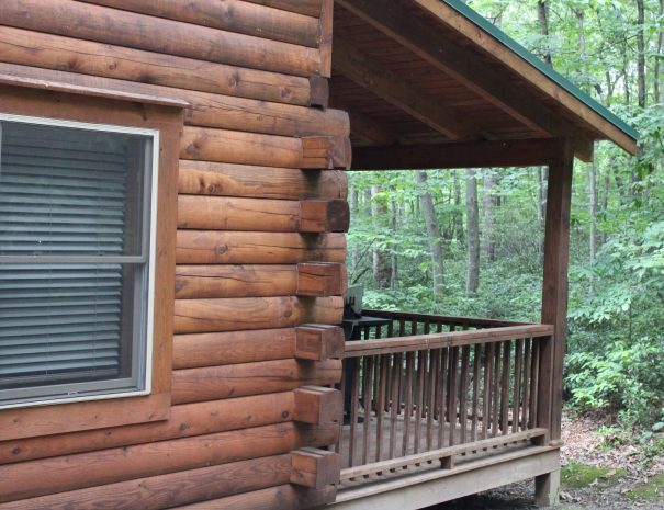 Iron Ring Cabin Back Porch