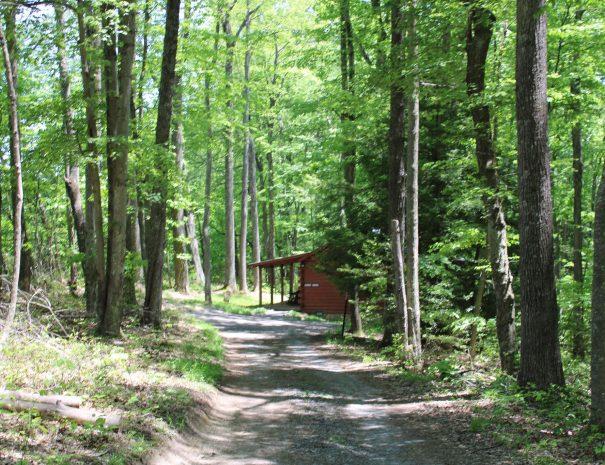 Almost Heaven Cabin Outside