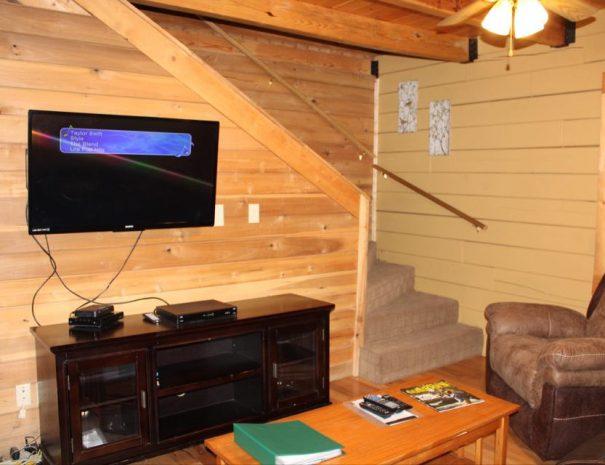 Appalachian Cabin Living Room TV