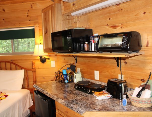 Holly Rock Treehouse Cabin Kitchenette