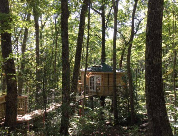 Holly Rock Treehouse Cabin with Walkway