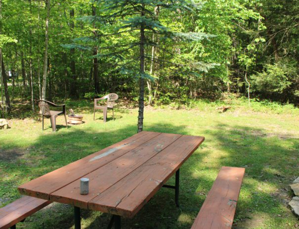 West Virginia Picnic Table
