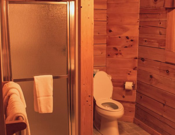 Mountaineer Downstairs Bathroom