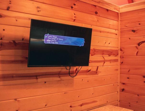 Sugar Shack Yurt TV