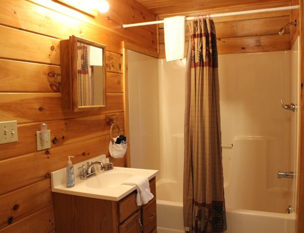 Lost Paddle Cabin Downstairs Bathroom 1