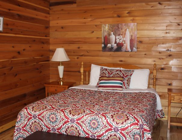 Appalachian Cabin Bedroom