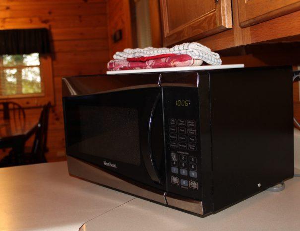 Jackson Cabin Kitchen Microwave