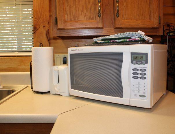 Spencer Cabin Kitchen Microwave