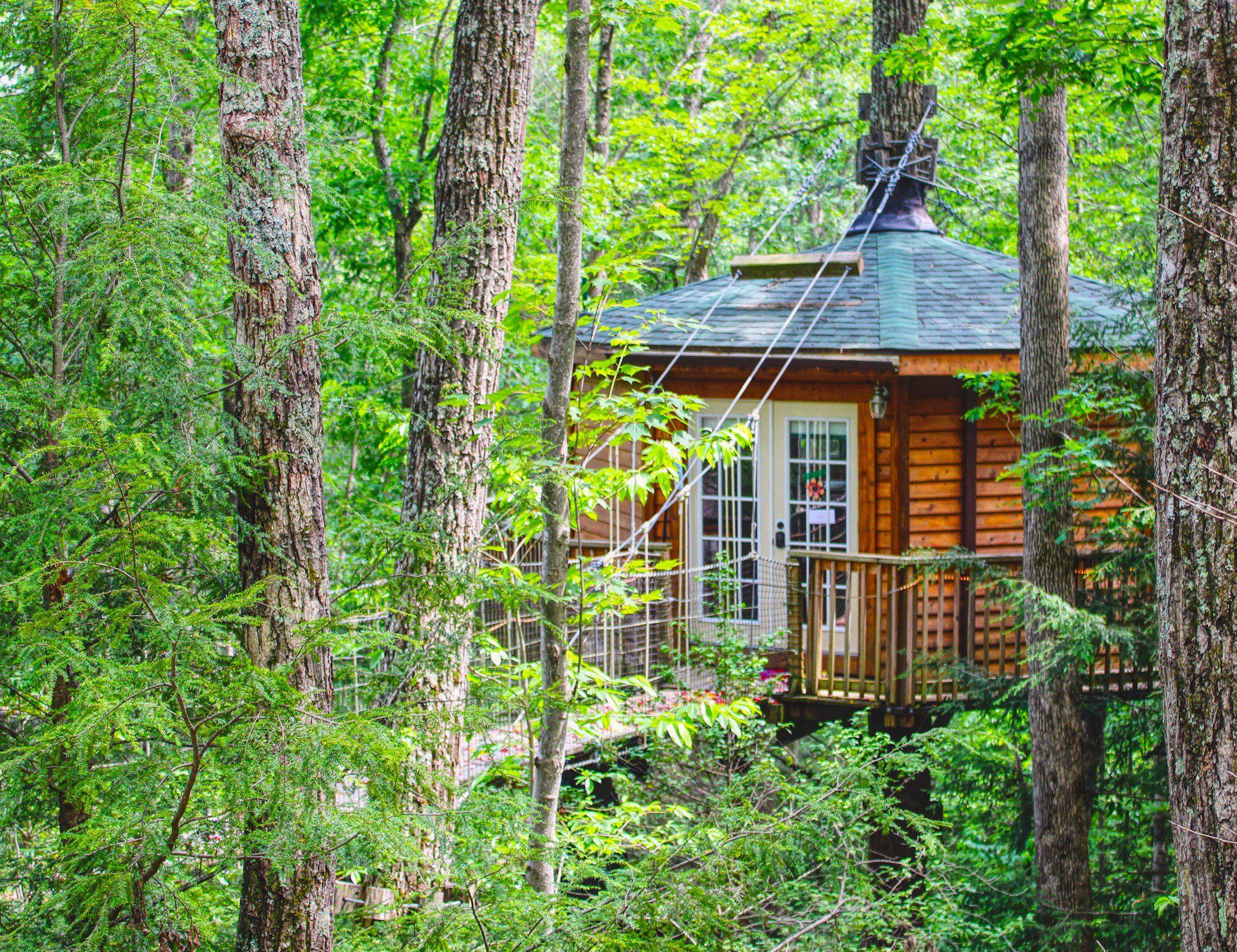 Holly Rock Treehouse Cabin