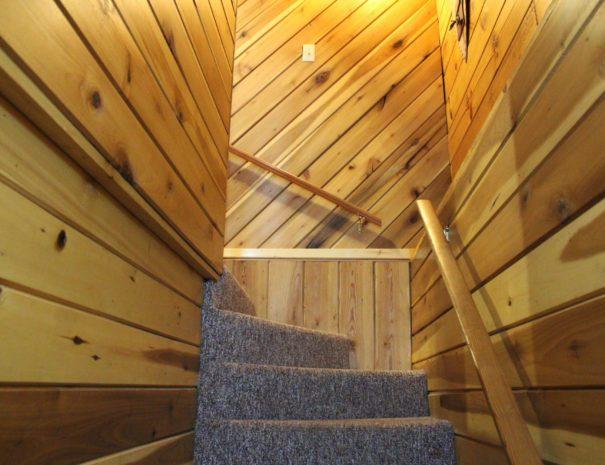 wilderness stairs
