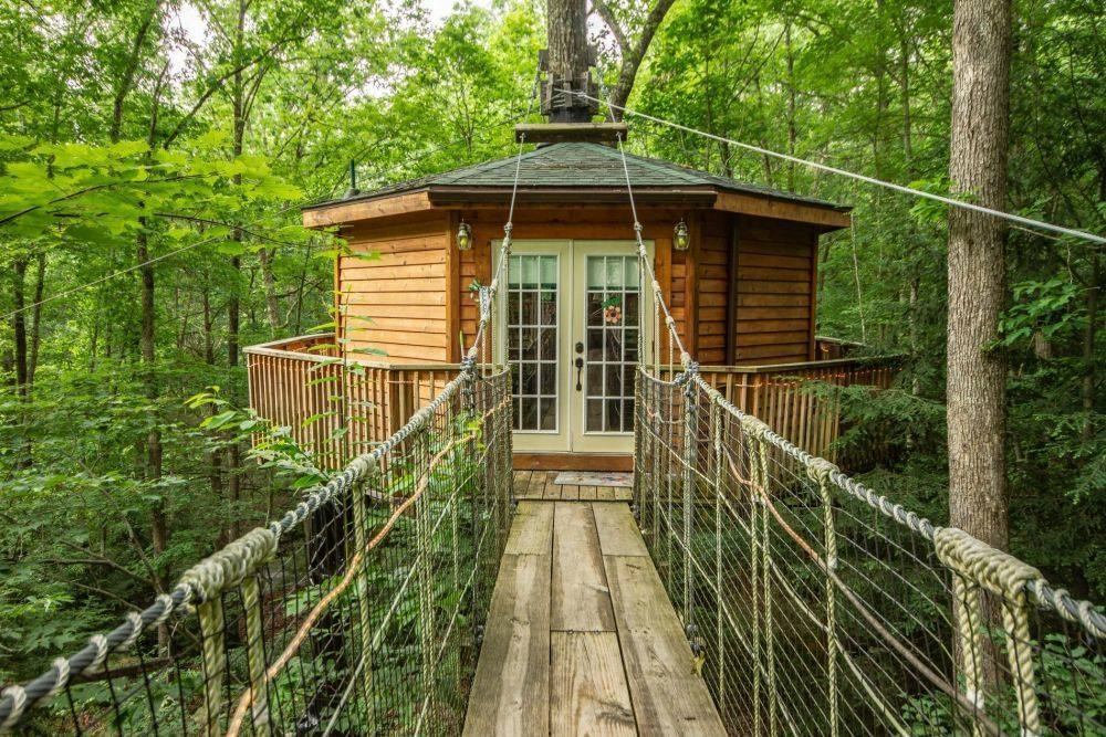Holly Rock Treehouse Cabin Outside with Walkway