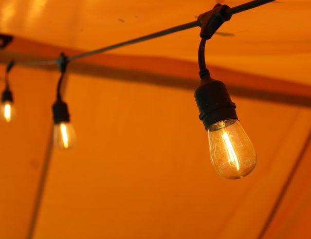 Safari Sun String Lights