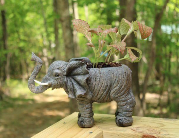 Safari Sun Elephant Planter