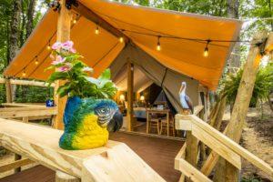 Tropical Sun Porch Jay Young